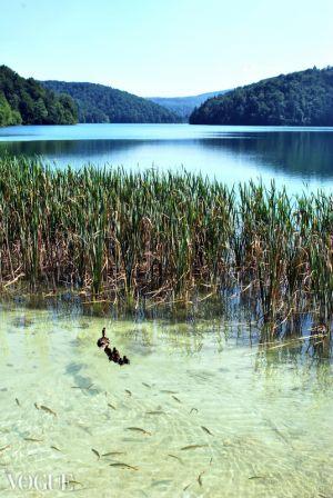 Plitvicze Lakes